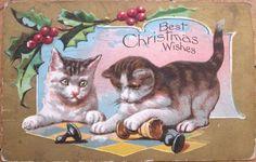 1909  Christmas Postcard Cats