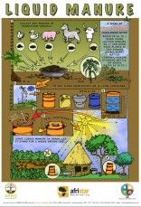 """""""Afristar Foundation utilises Permaculture design systems as the primary methodology of our community development strategy. Permaculture is an optimistic, Organic Gardening, Gardening Tips, Organic Fertilizer, Vintage Gardening, Liquid Fertilizer, Sustainable Gardening, Vegetable Gardening, Permaculture Courses, Bountiful Garden"""