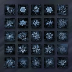 Snowflake photo collage: End of season - dark crystals