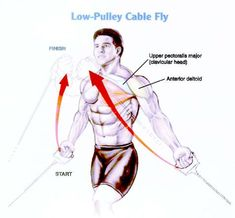 1000 images about chest exercise on pinterest best for Floor underhand cable fly
