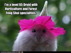 And I have a great hat!