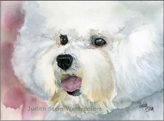 I love this Bichon Frise painting! (check out the website for more details.)