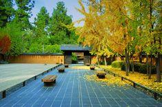 Japanese Garden. (--Cris T.)