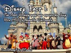 I want to go so bad! I love disney! Disney World Facts, Disney Princess Facts, Disney Fun Facts, Disney Jokes, Funny Disney Memes, Cute Disney, Disney Trivia, Disney Princesses, Disney Characters