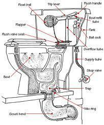 58 best plumbing tips images bathroom plumbing construction Bathroom Light Fan Combination Switch Wiring To how does a toilet work toilet basics 101 plumbing pipe bathroom toilets bathroom