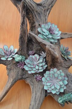 60 Trendy Gifts Flowers Ideas Stampin Up Paper Succulents, Paper Plants, Hanging Succulents, Felt Flowers, Diy Flowers, Fabric Flowers, Paper Flowers, Cactus, Succulent Gifts