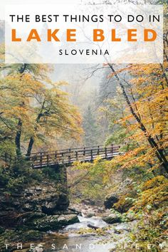 The Best Things To Do In Lake Bled + where to stay