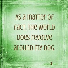 As a matter of fact the world does revolve around my dog - Funny Dog Quotes - As a matter of fact the world does revolve around my dog The post As a matter of fact the world does revolve around my dog appeared first on Gag Dad. All Dogs, I Love Dogs, Puppy Love, Best Dogs, Cute Dogs, Dogs And Puppies, Doggies, Pugs, Chihuahuas