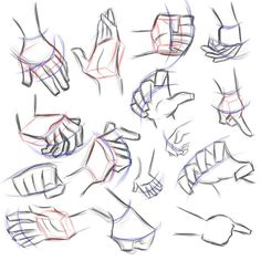 Totally need to get my hands better! Drawing Reference Poses, Anatomy Reference, Drawing Poses, Art Reference, Anatomy Sketches, Drawing Sketches, Art Drawings, Sketching, Body Drawing