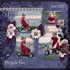 Hidden Artistry: Bicycle Fun