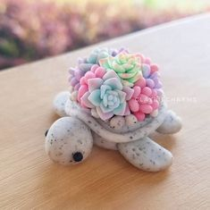 Beautiful clay succulents on a turtle!
