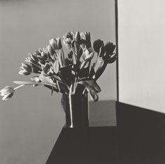 Zaterdag opent in de Kunsthal in Rotterdam een retrospectief van Robert Mapplethorpe (1946-1989), een van de invloedrijkste fotografen van de twintigste eeuw. Met meer dan tweehonderd portretten, zelfportretten, naakten en stillevens biedt de Kunsthal - als enige in Europa - een overzicht van zijn carrière.