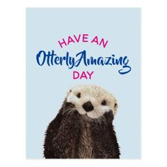 Have an Otterly Amazing Day Cute Otter Photo Postcard - humor funny fun humour humorous gift idea