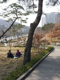 Retired couple enjoying a lunch picnic at a public park in Seoul,  South Korea, early spring 2014