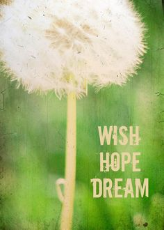 •´¯`•.¸¸. Hope