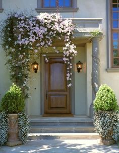 The clematis and the urns make this front entry a gracious focal point. The drape of the clematis over one side adds the contrast that keeps this from being too balanced and predictable. Front Entrances, Front Garden, Beautiful Doors, Front Yard, Climbing Vines, Front Door Design, Curb Appeal, Entry Design, Flowering Vines