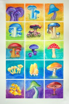 Pastel Mushrooms done by SunRidge Charter School 5th graders 2015 for Auction