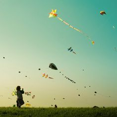 Spend an afternoon making a homemade kite and flying it.