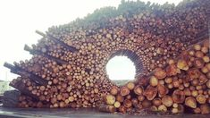 Creative Wood Stacking Into Art Form
