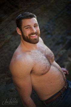 bear beard perfect