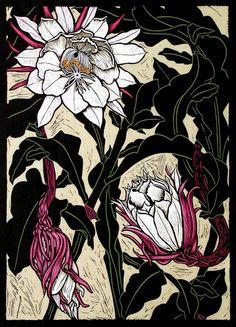 Night Flowering Cactus, linocut print by Rachel Newling Art And Illustration, Botanical Illustration, Illustrations, Arte Floral, Linocut Prints, Exotic Flowers, Botanical Art, Kitsch, Flower Art