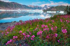15 of the most beautiful places in Alaska - With mountains to climb, rivers to raft, glaciers to coo over and a bevy of bears to photograph, Alaska is the ultimate wilderness. From the moment you arrive, the raw, unspoiled beauty of USA's 49th state …
