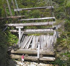 Lower Kauri Dam - Great Barrier Island. Read about its history at www.thebarrier.co.nz