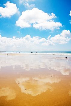 Port Elizabeth's beach in South Africa.