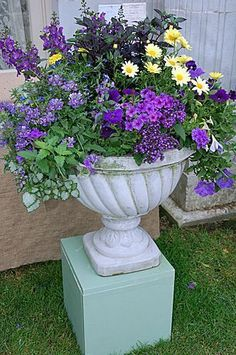 cottage style annual containers | The annual Newport Flower Show at Rosecliff is a summer tradition that ... #containergardens #containergardening