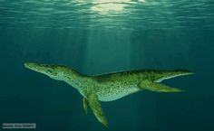 ocean.dinosaurs | large pliosaur that lived during the Lower Cretaceous Period