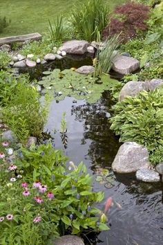 Stunning Diy Ideas: Backyard Garden On A Budget Decorating Ideas backyard garden vegetable people.Backyard Garden Inspiration Awesome backyard garden vegetable how to grow. Backyard Garden Landscape, Pond Landscaping, Ponds Backyard, Landscaping With Rocks, Garden Ponds, Landscaping Design, Backyard Waterfalls, Garden Stream, Landscape Edging