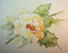 Watercolor Paintings by RoseAnn Hayes
