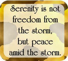Serenity is not freedom from the storm, but peace amid the storm.