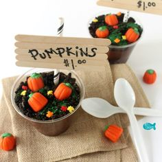 Pumpkin Patch Pudding Cups Square