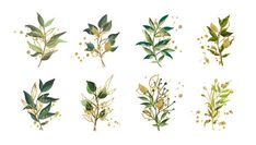 Gold green tropical leaves wedding bouquet with golden splatters isolated on white background. Floral vector illustration arrangement in watercolor style. Watercolor Flower Background, Watercolor Leaves, Watercolor Flowers, Vintage Grunge, Adobe Illustrator, Illustration Vector, Illustrations, Design Floral, Natural Background