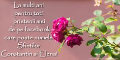 Sfintii Constantin si Elena La multi ani pentru toti prietenii mei de pe facebook care poarta numele Sfintilor Constantin si Elena!
