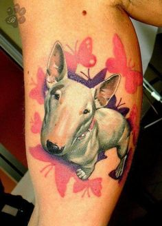 English bull terrier tattoo - Dog Tattoo - Butterflies