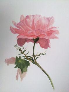 estudio de arte orzan: Pintando rosas con mancha directa