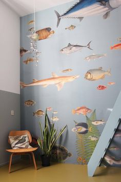 ZOO: behang 'vissen' in woonhuis / wallpaper 'fish' in apartment