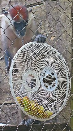 up-cycled fan pieces attached together