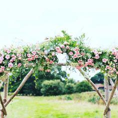 A spray rose arch