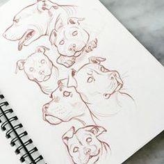 A few bull doggies from my sketchbook! . #bulldog #amstaff #amstafflove #puppies #dogsofinstagram #artistsofinstagram #instaartist #sketchbook #mysketchbook #sketching #drawing #sketchdump
