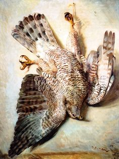Zdeněk Burian Hawkgirl, Birds, Illustration, Artist, Painting, Inspiration, Death, Animaux, Paint
