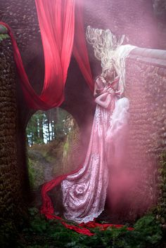 Wonderland : The Briar Rose  kirstymitchellphotography