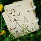 wooden nature books