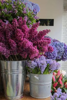 Flowers everywhere. I am receiving them everyday Lilac Tree, Lilac Flowers, Fresh Flowers, Spring Flowers, Beautiful Flowers, Flower Farm, My Flower, Flower Power, Lilac Bushes