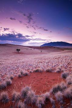 Fairy Circle, Wereldsend Farm, Namib Rand, Namibia