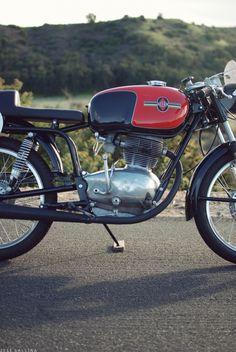 Gilera 175 Milano Taranto by Hugo Gallina #motorcycles #bikes #gilera