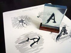 Evolution of Type, Exhibit 17 & 19 by Andreas Scheiger, via Behance