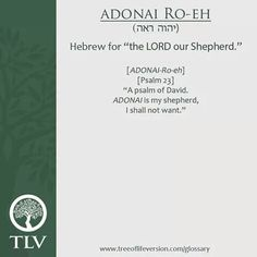Hebrew for the lord is our shepherd. TLV Glossary Word of the Day: ADONAI Ro-eh Hebrew Names, Hebrew Bible, Learn Hebrew, Hebrew Words, Bible Words, Biblical Names, Messianic Judaism, Bible Society, Devotional Quotes